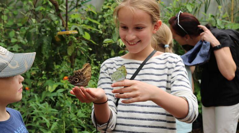 Mädchen mit Schmetterlingen auf der Hand
