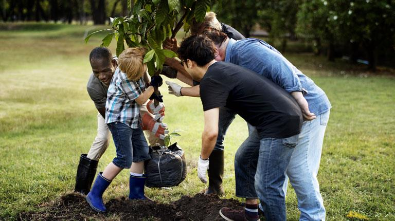 People planting a tree